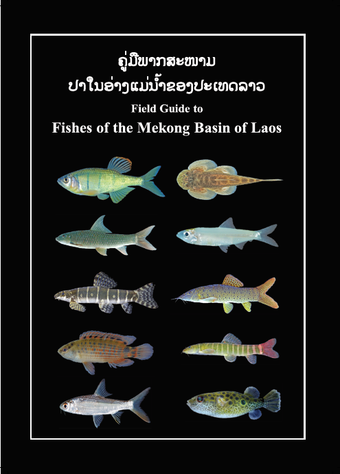 Fishes of the Mekong Basin of Laos